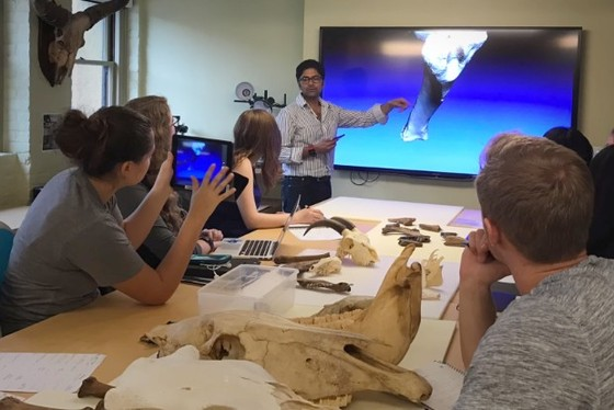 Stanford University Libraries has been piloting 3-D scanning technology to make materials including animal bones, archaeological artifacts and other objects more readily accessible to scholars on campus and across the world.