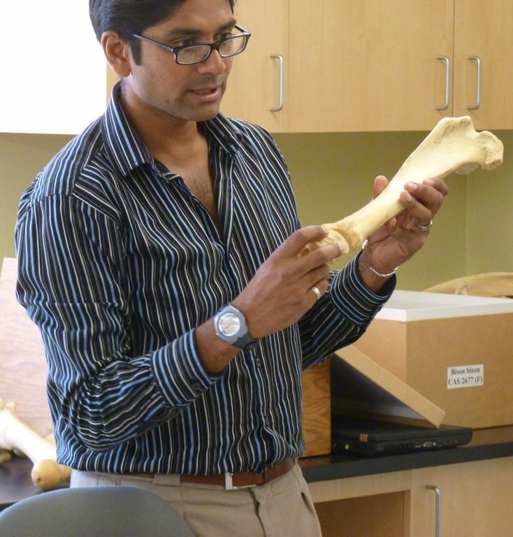 Dr. Krish Seetah